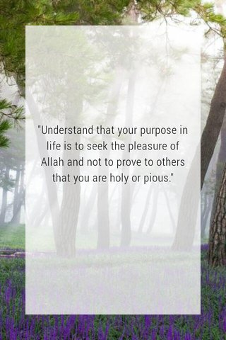 """""""Understand that your purpose in life is to seek the pleasure of Allah and not to prove to others that you are holy or pious."""""""