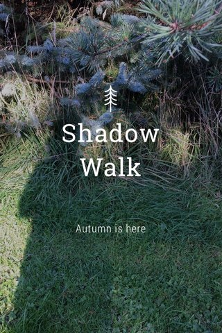 Shadow Walk Autumn is here
