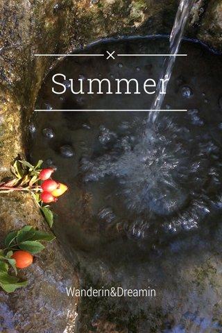 Summer Wanderin&Dreamin