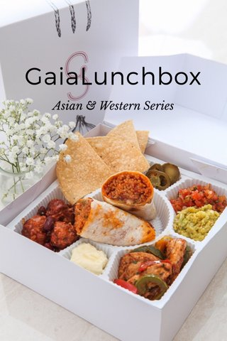 GaiaLunchbox Asian & Western Series