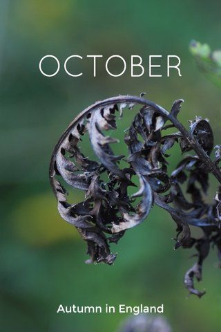 OCTOBER Autumn in England