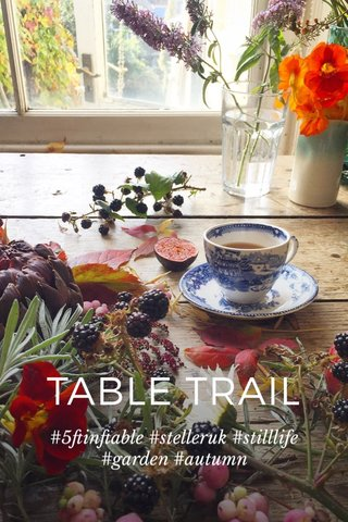 TABLE TRAIL #5ftinftable #stelleruk #stilllife #garden #autumn