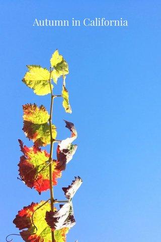 Autumn in California