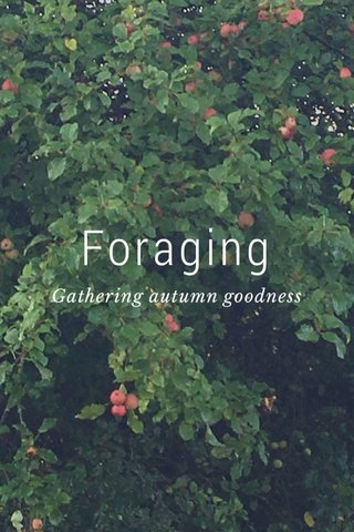 Foraging Gathering autumn goodness