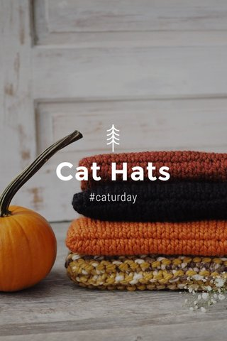 Cat Hats #caturday