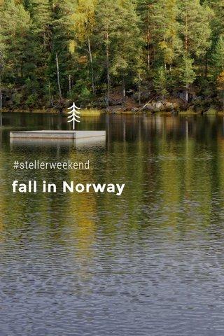 fall in Norway #stellerweekend