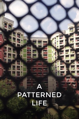 A PATTERNED LIFE