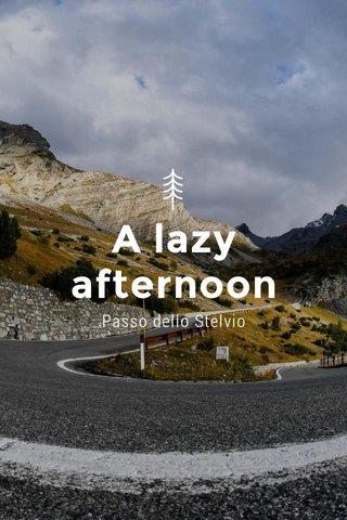 A lazy afternoon Passo dello Stelvio