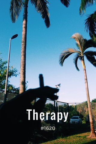Therapy #1620