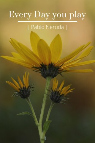 Every Day you play | Pablo Neruda |
