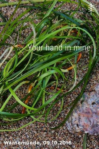 Your hand in mine Warnemünde, 09.10.2016