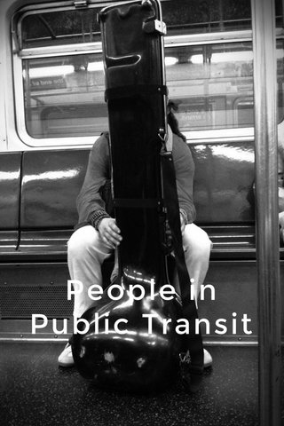 People in Public Transit