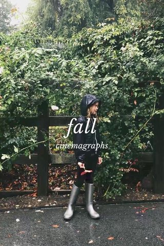fall cinemagraphs