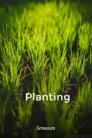 Planting Sematan