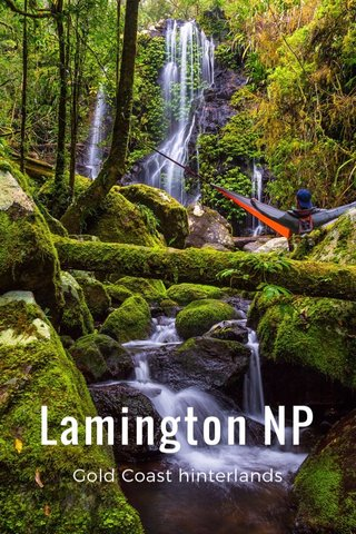 Lamington NP Gold Coast hinterlands