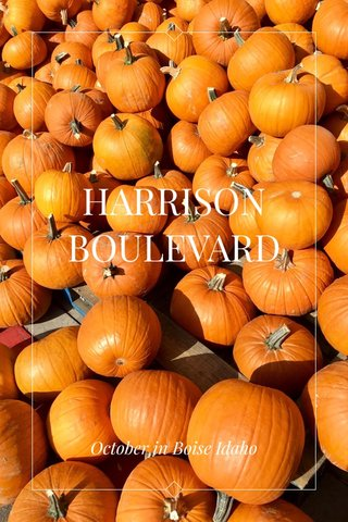 HARRISON BOULEVARD October in Boise Idaho