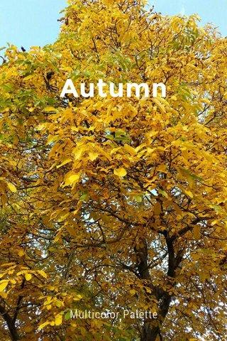 Autumn Multicolor Palette