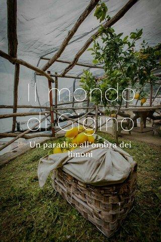 Il mondo di Gigino Un paradiso all'ombra dei limoni