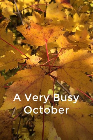 A Very Busy October