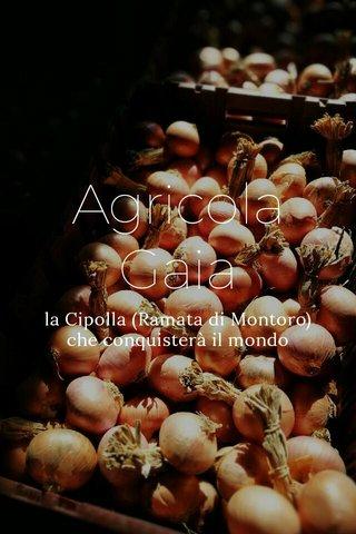 Agricola Gaia la Cipolla (Ramata di Montoro) che conquisterà il mondo