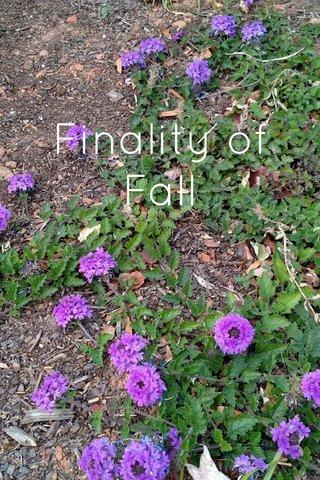 Finality of Fall
