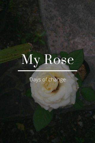 My Rose Days of change