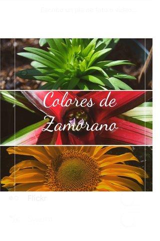 Colores de Zamorano