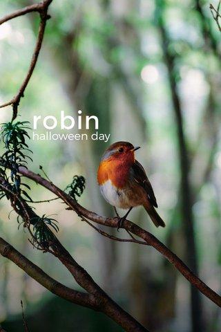 robin halloween day