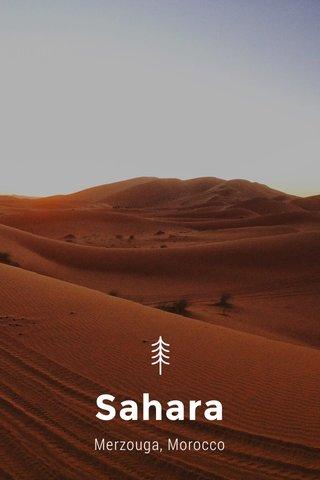 Sahara Merzouga, Morocco
