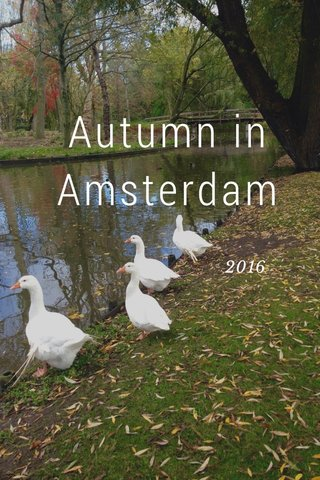 Autumn in Amsterdam 2016