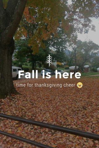 Fall is here time for thanksgiving cheer 😂
