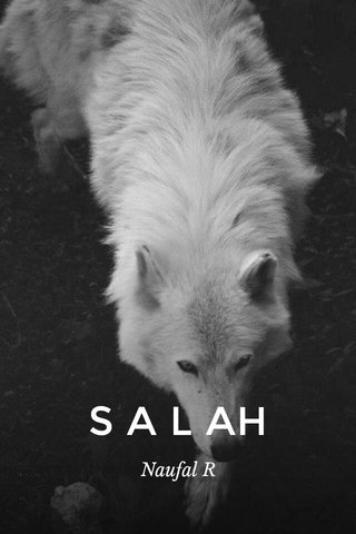 S A L AH Naufal R
