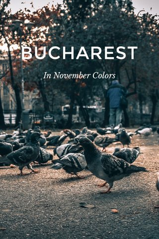 BUCHAREST In November Colors