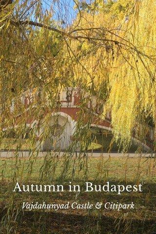 Autumn in Budapest Vajdahunyad Castle & Citipark