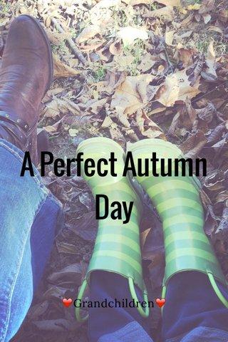 A Perfect Autumn Day ❤️Grandchildren❤️