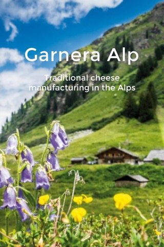 Garnera Alp Traditional cheese manufacturing in the Alps