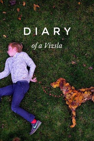 DIARY of a Vizsla