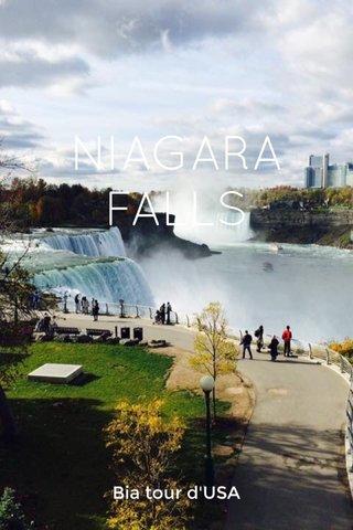 NIAGARA FALLS Bia tour d'USA