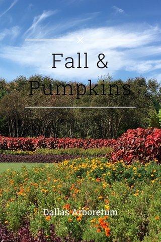 Fall & Pumpkins Dallas Arboretum