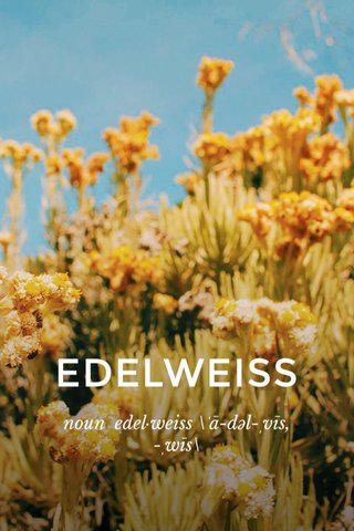 EDELWEISS noun edel·weiss \ˈā-dəl-ˌvīs, -ˌwīs\