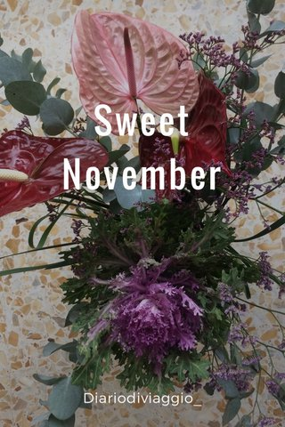 Sweet November Diariodiviaggio_