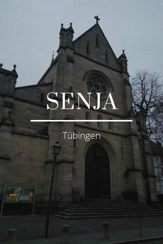 SENJA Tübingen