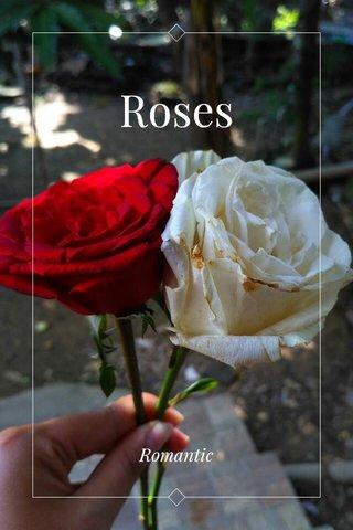 Roses Romantic