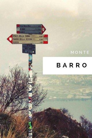BARRO MONTE