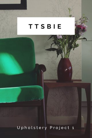 TTSBIE Upholstery Project 1