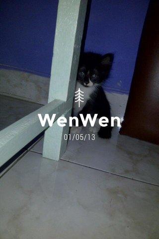 WenWen 01/05/13