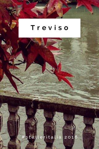 Treviso #stelleritalia 2016