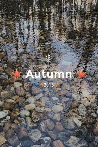 🍁 Autumn 🍁 🍂2016🍂