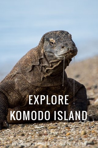 EXPLORE KOMODO ISLAND Photographer I Dewa N Artha