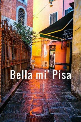 Bella mi' Pisa